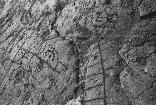 petroglyph-field.jpg